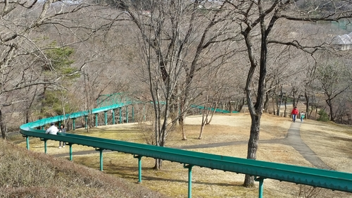 滾軸滑梯全長161米,途中仲可以欣賞到天鵝湖的美景呀!(圖片來源:kids.play-spot.jp)